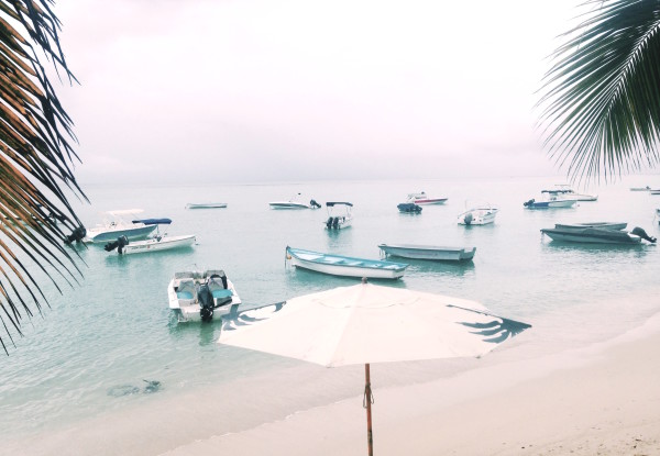 Anidenkt Mauritius