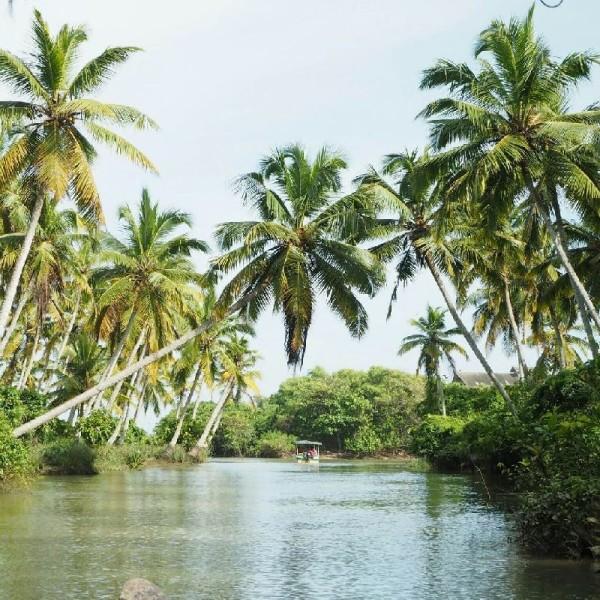 Ayurvedakur in Kerala - Ist es nicht wunderschön hier? Die Stille und Ruhe ist einmalig.