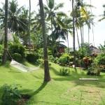Erfahrungsbericht Ayurvedakur in Indien – Teil 2