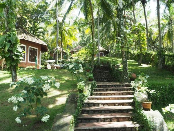 Ayurvedakur in Kerala - Das Somatheeram ist ein Paradies