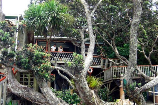 Coconut Sports Neuseeland-hostel-weihnachten