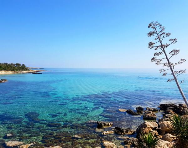 Vizakia Beach 3