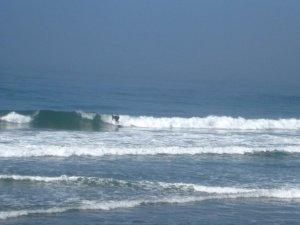 Westküste 6