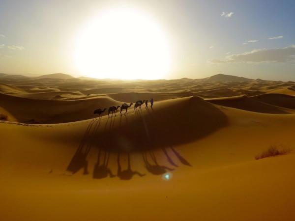 Melanie in der Sahara