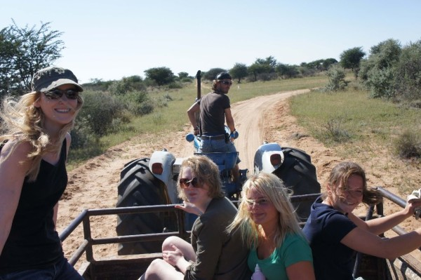 Volunteer Wilflife in Namibia