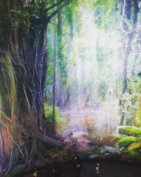 Spektakuläre Rundbilder des Amazonas im Panorama XXL.