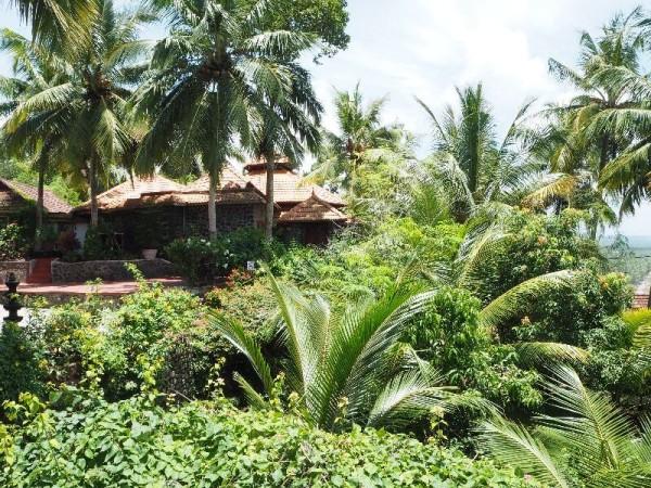 Tropisch, grün und paradiesisch ist das Somatheeram Ayurvedic Health Resort