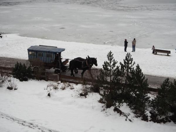 Araballa Alpenhotel am Spitzingsee Pferdekutsche