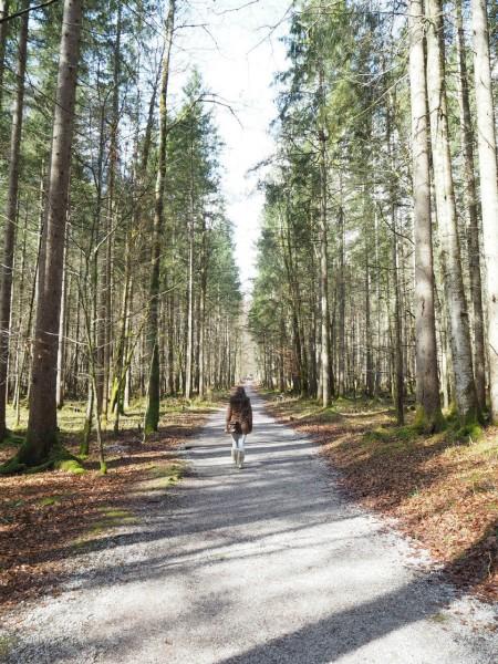 Wanderung zur Eiskapelle Watzmann im Berchtesgadener Land