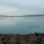 7 Tipps für Reykjavik im Winter