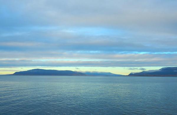 Island Reykjavik Elding Whale Watching