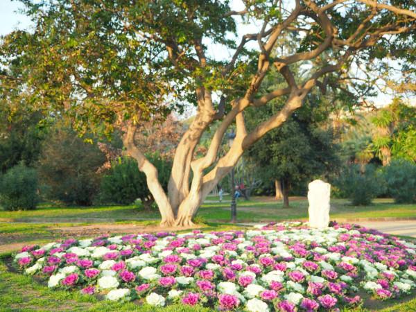 Barcelona Park de la Ciutadella