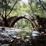 """Das ist der """"Schwarzwald"""" in Zypern – von wegen nur tolle Buchten und Strände"""