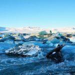 {VIDEO} – Island im Winter, eine Rundreise über die Ringstraße