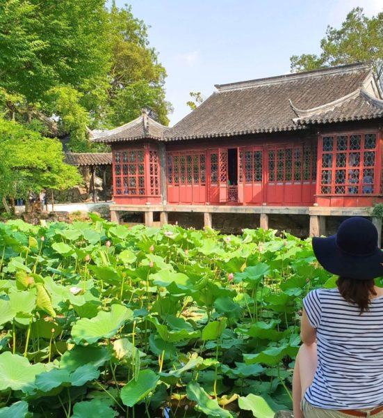 China-Suzhou-Garten-des-bescheidenen-Beamten-02