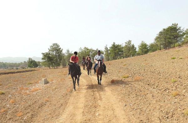 Zypern Nikosia Reitschule P. Tsaktiris reiten